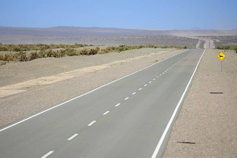 Lonely road through the plateau near Uspallata, Mendoza province, Argentina, South America