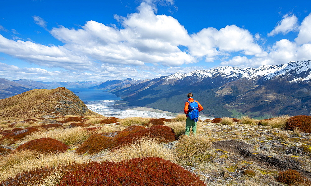 Hiker on the summit of Mount Alfred, views of Lake Wakatipu and mountain peaks, Glenorchy near Queenstown, Southern Alps, Otago, South Island, New Zealand, Oceania