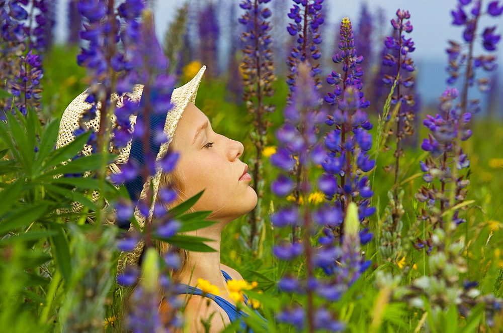 Portrait, girl sitting relaxed between flowering lupines, Upper Austria, Austria, Europe