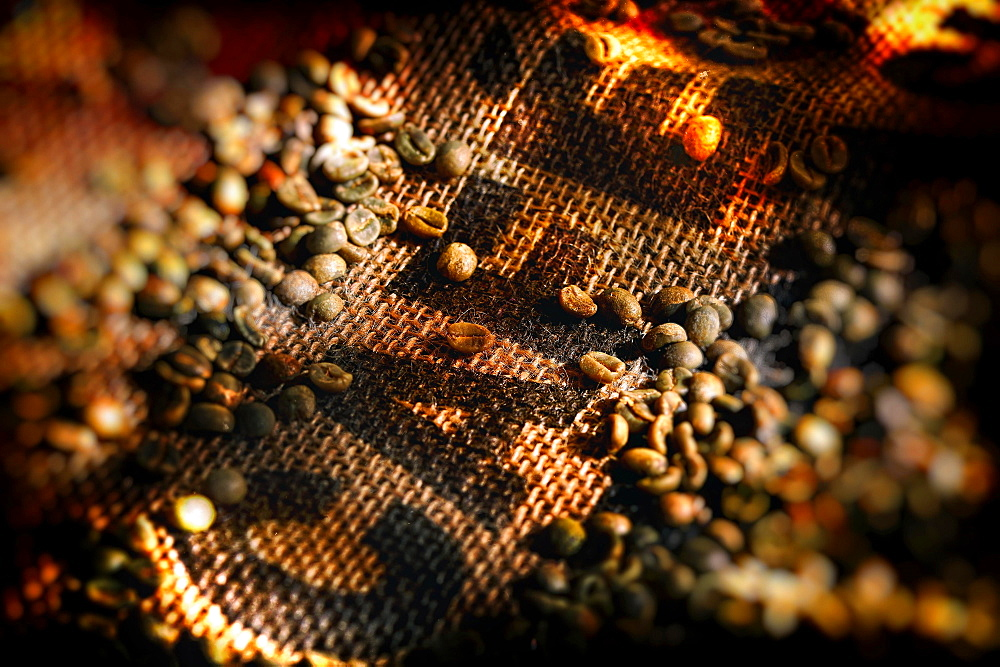 Roasted coffee beans, studio shot, Germany, Europe