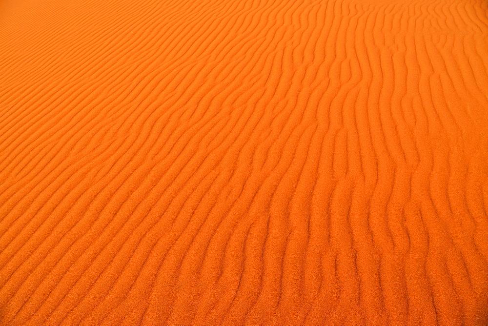 Ripple, sand dune, Sossusvlei, Namib Desert, Namib Naukluft Park, Hardap region, Namibia, Africa