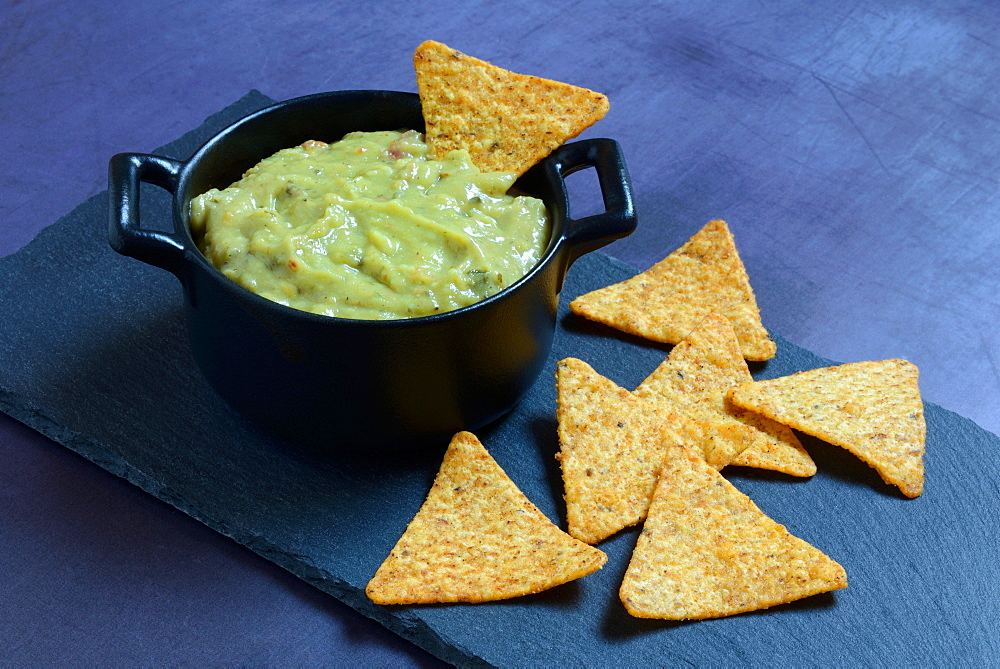 Guacamole in potty and tortilla chips, Germany, Europe