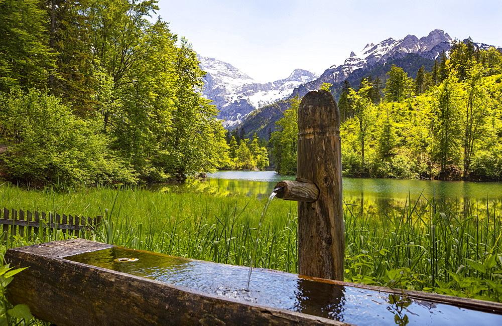 Holzbrunnen near the Grosser Oedsee, Grosser Oedsee, Gruenau im Almtal, Totes Gebirge, Salzkammergut, Upper Austria, Austria, Europe
