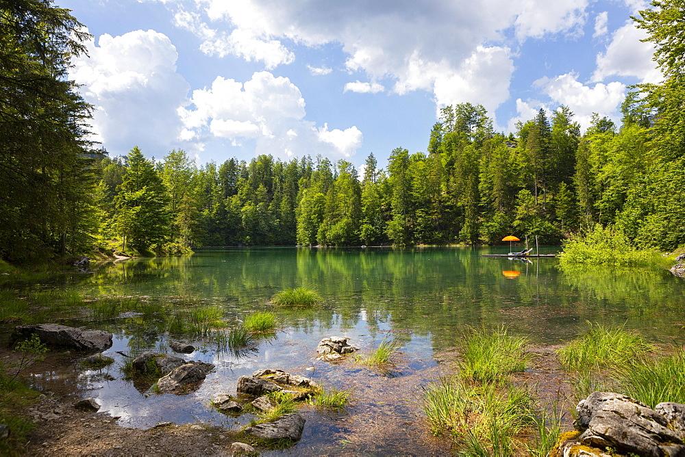 Kleiner Oedsee, Gruenau im Almtal, Salzkammergut, Upper Austria, Austria, Europe