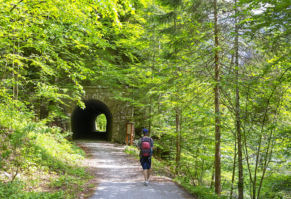Koppental hiking trail from Obertraun to Bad Aussee, river Koppentraun, railway tunnel of the old route, Salzkammergut, Upper Austria, Austria, Europe