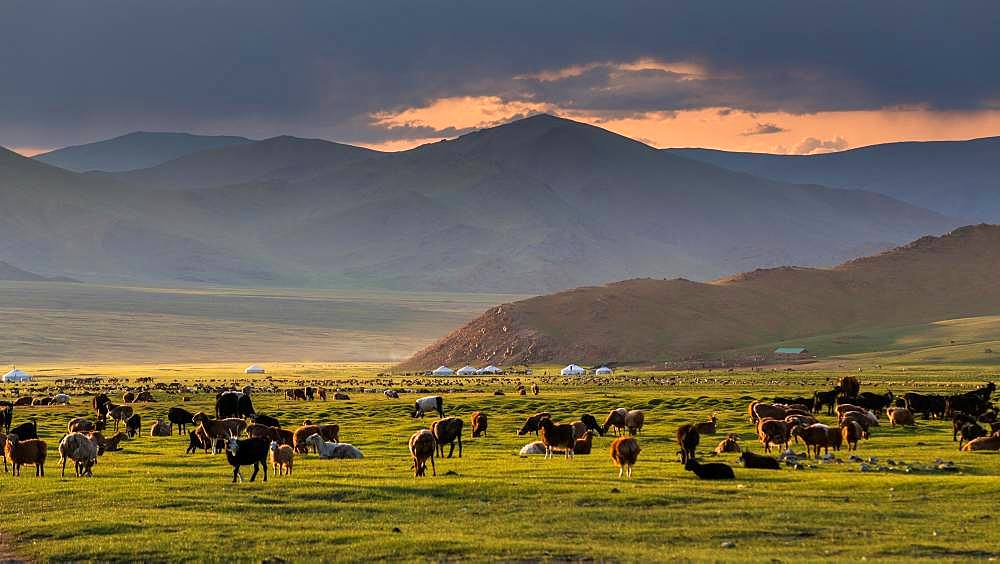 Peaceful evening. Mount Tsambagarav summer camp. Bayan-Ulgii province. Mongolia