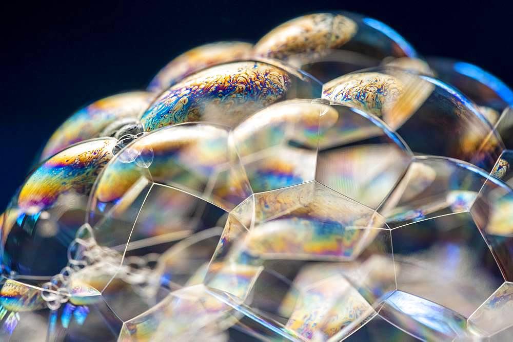 Soap bubbles, foam, light reflected in all colours - 832-388553