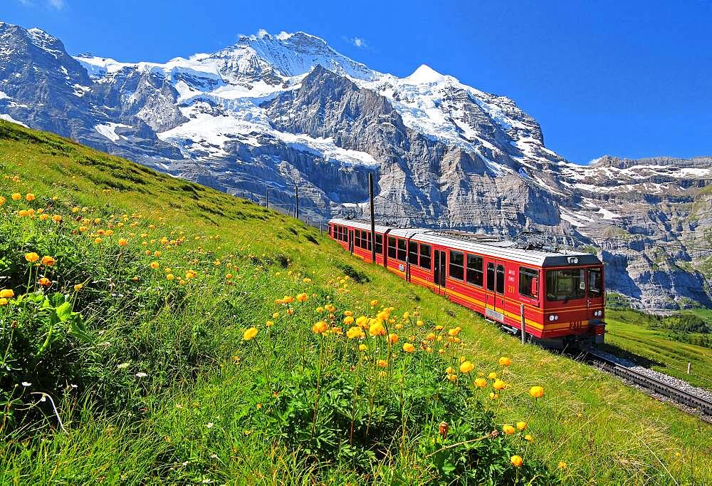 Jungfrau Railway at Kleine Scheidegg in front of the Jungfrau-Massif, UNESCO World Natural Heritage, Wengen, Jungfrau Region, Bernese Alps, Bernese Oberland, Canton of Bern, Switzerland, Europe