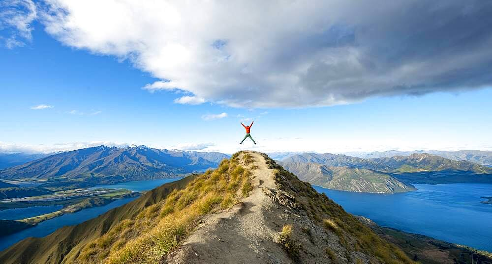 Hiker takes a skydive, views of mountains and lake from Mount Roy, Roys Peak, Lake Wanaka, Southern Alps, Otago, South Island, New Zealand, Oceania - 832-389151