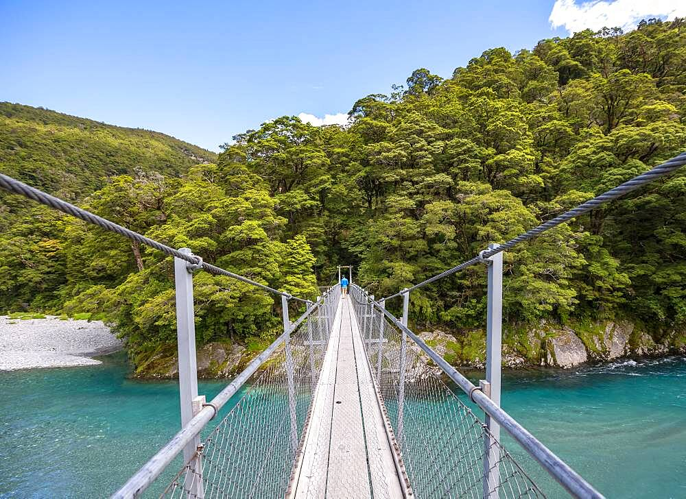 Suspension Bridge, Blue Pools Rock Pool, Makarora River, turquoise crystal clear water, Haast Pass, West Coast, South Island, New Zealand, Oceania - 832-389686
