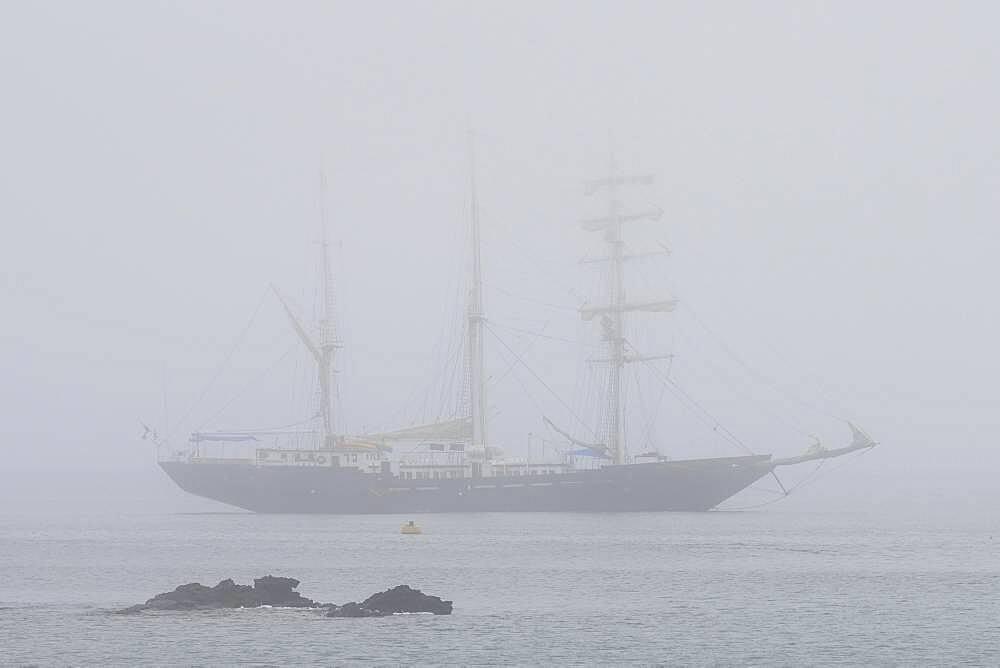 Sailing ship, three-master at anchor in fog, Floreana Island, Galapagos, Ecuador, South America - 832-389772