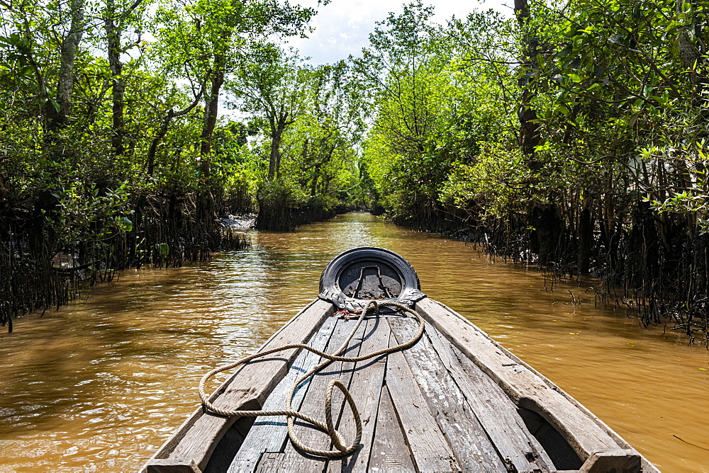 Rowing through a small water channel, Cai Be, Mekong Delta, Vietnam, Asia - 832-389905