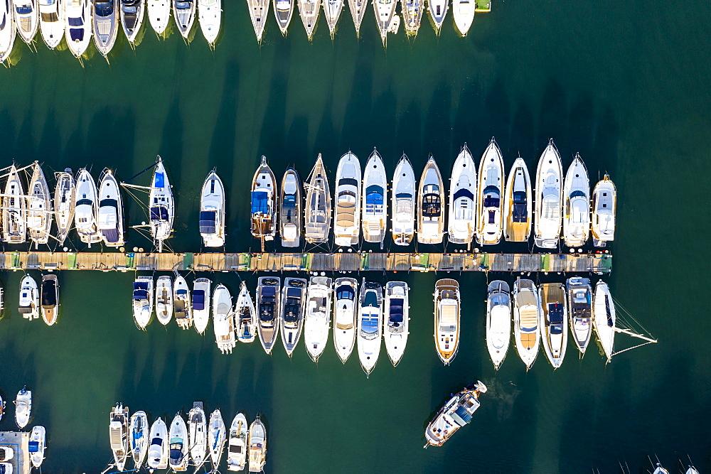 Andratx, Port d'Andratx, boats at the jetty from above, Majorca, Balearic Islands, Spain, Europe - 832-389916