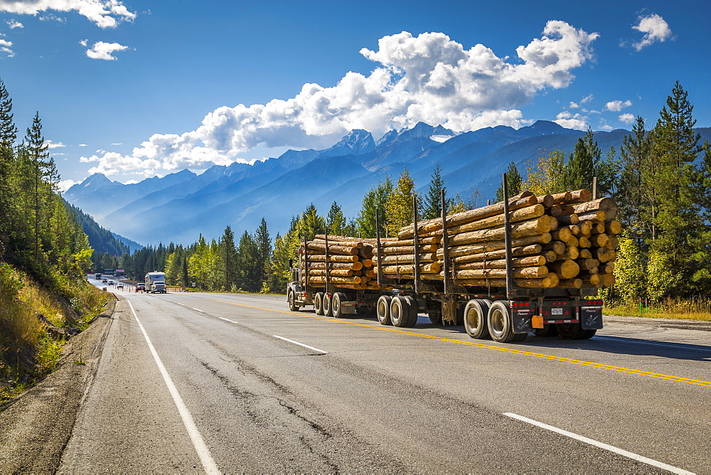 Timber laden Freightliner travelling on the Trans Canada Highway in Glacier National Park, British Columbia, Canada, North America