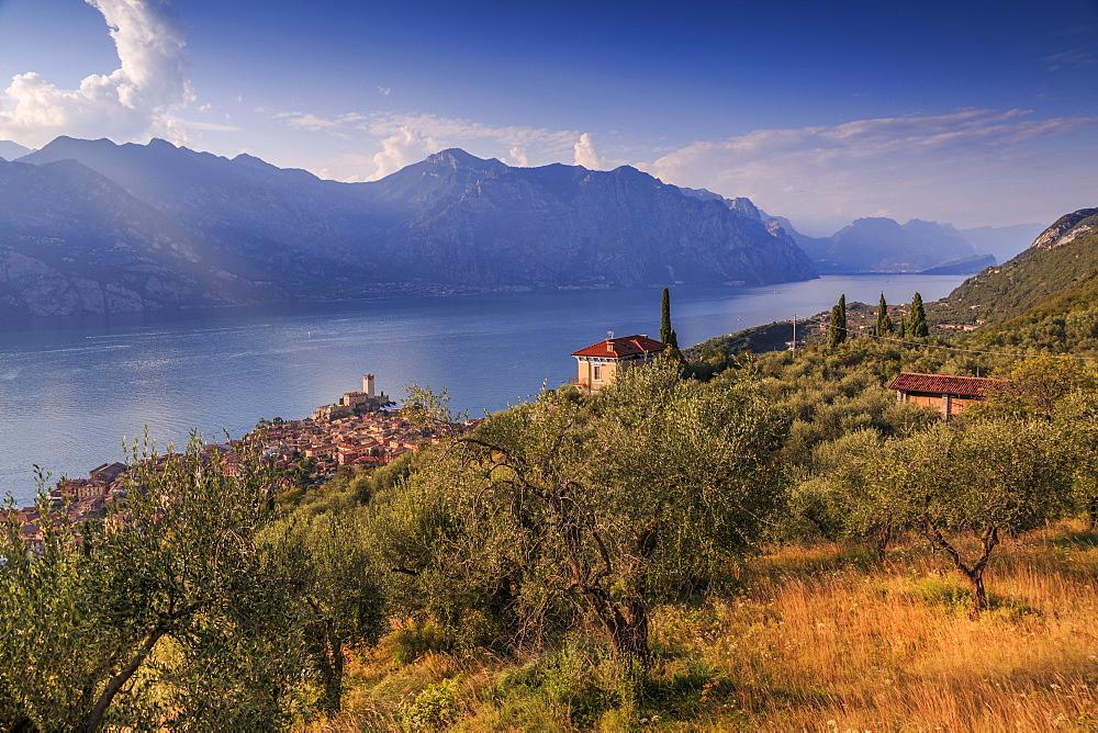 Elevated view of Castello Scaligero, Scaliger castle, Malcesine, Lake Garda, Veneto, Italy, Europe