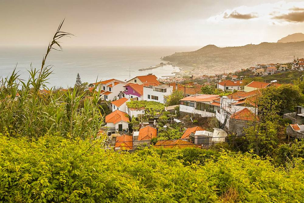 View over harbour and old town of Funchal viewed from elevated position, Madeira, Portugal, Europe - 844-16264