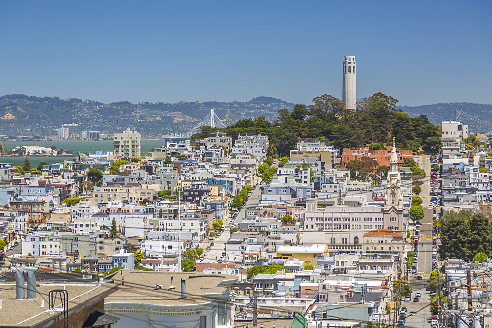 View of Coit Tower from Russian Hill, San Francisco, California, United States of America, North America - 844-17008