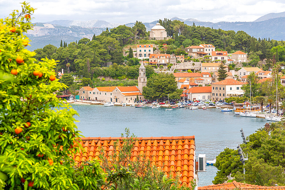 View of town from elevated position, Cavtat on the Adriatic Sea, Cavtat, Dubronick Riviera, Croatia, Europe