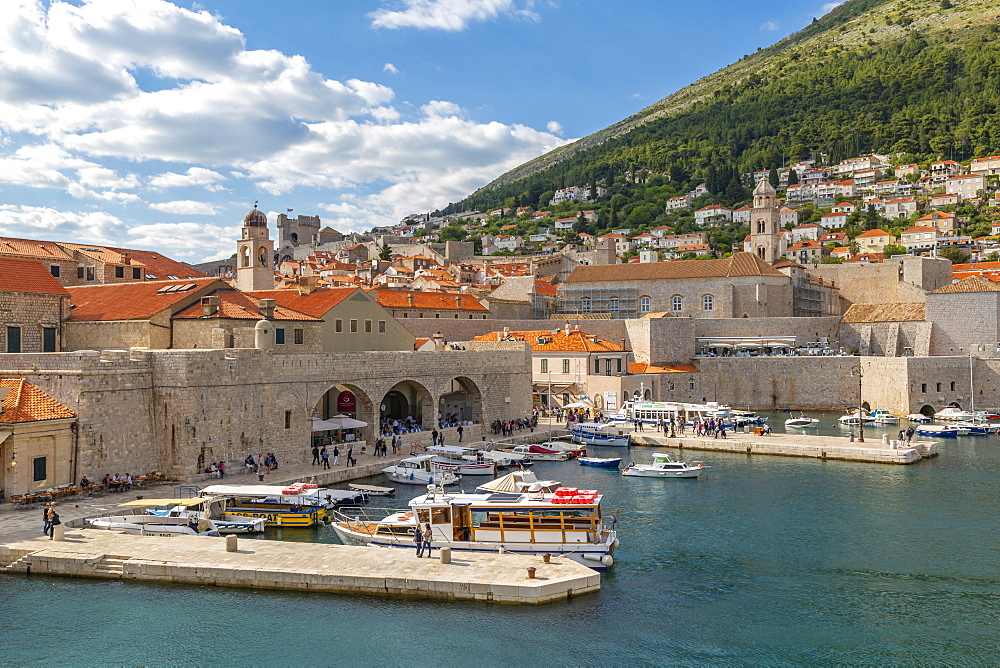 View of boats in harbour of Dubrovnik Old Town from the wall, Dubrvnik, Dalmatia, Croatia, Europe