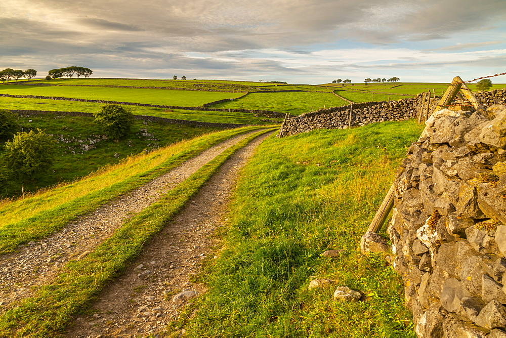 View of track and landscape near Whetton, Tideswell, Peak District National Park, Derbyshire, England, United Kingdom, Europe