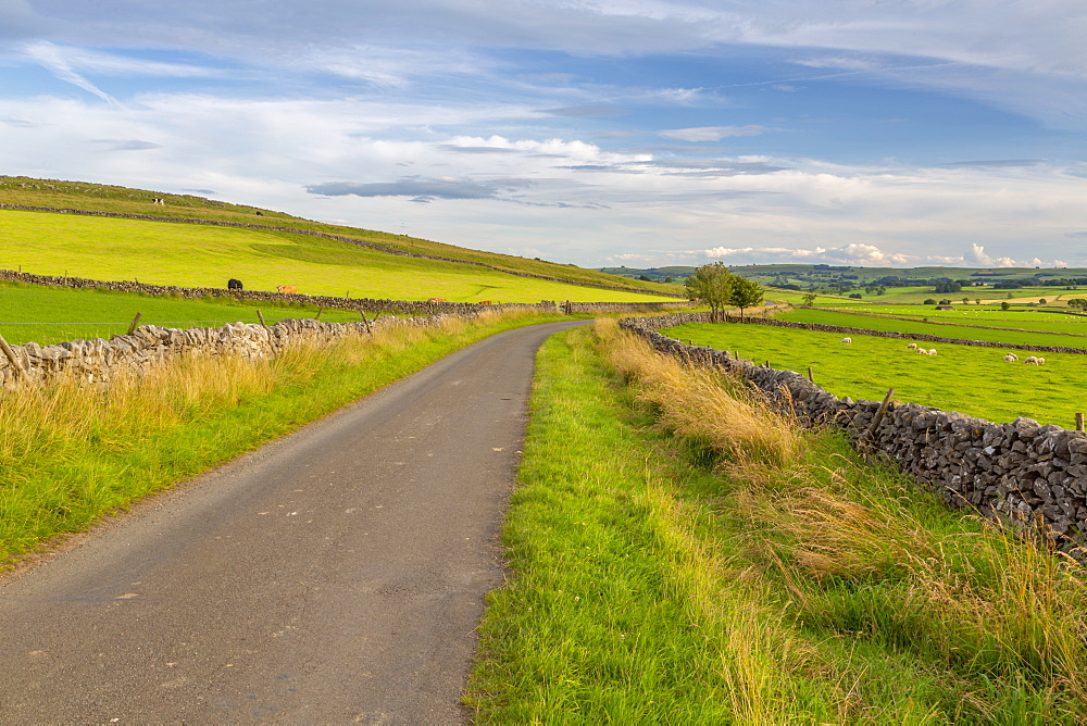 View of dry stone walls and countryside near Litton, Peak District National Park, Derbyshire, England, United Kingdom, Europe