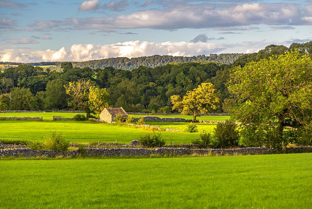 View of dry stone walls near Youlgrave village, Peak District National Park, Derbyshire, England, United Kingdom, Europe