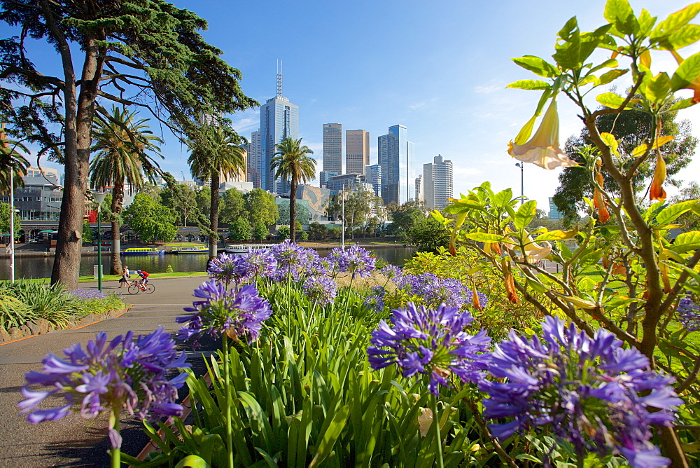 View of City from Alexandra Gardens, Melbourne, Victoria, Australia, Pacific