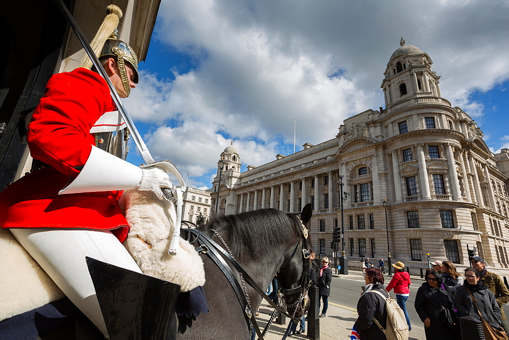 Guard on horseback, Whitehall, Westminster, London, England, United Kingdom, Europe