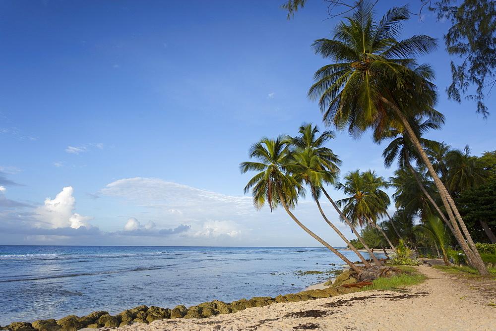 Hastings Beach, Bridgetown, Christ Church, Barbados, West Indies, Caribbean, Central America