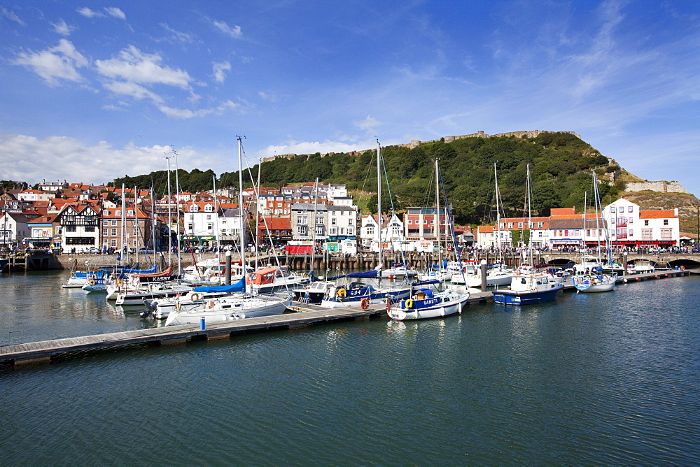 Yachts moored in the Old Harbour below Castle Hill, Scarborough, Yorkshire, England, United Kingdom, Europe - 845-1005