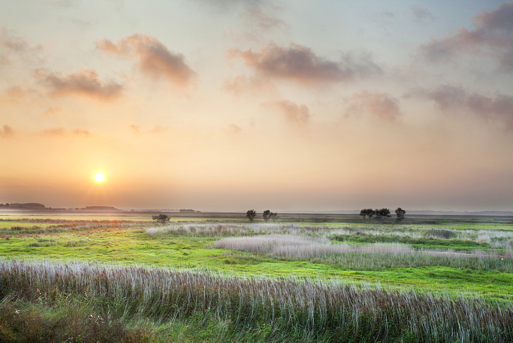 Sunset over the Marshes at Aldeburgh, Suffolk, England, United Kingdom, Europe - 845-1012