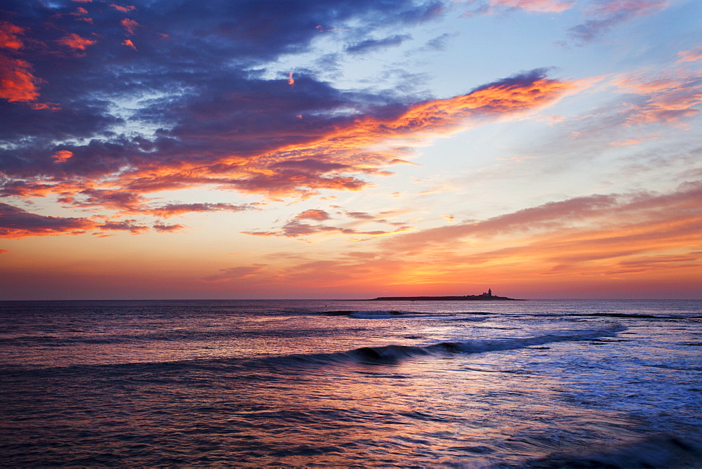Coquet Island at dawn, Northumberland, England, United Kingdom, Europe - 845-1025