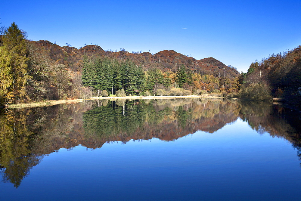 Yew Tree Tarn on a sunny autumn day, Lake District National Park, Cumbria, England, United Kingdom, Europe - 845-1030