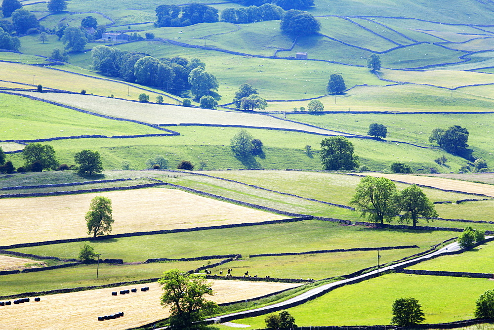 Meadows in Wharfedale from Edge Top near Hebden, Yorkshire Dales, Yorkshire, England, United Kingdom, Europe - 845-953