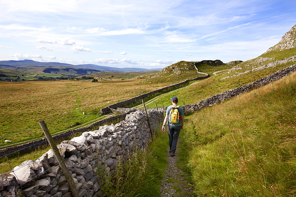 Walker on a Public Footpath near Langcliffe in Ribblesdale, Yorkshire, England, United Kingdom, Europe - 845-973