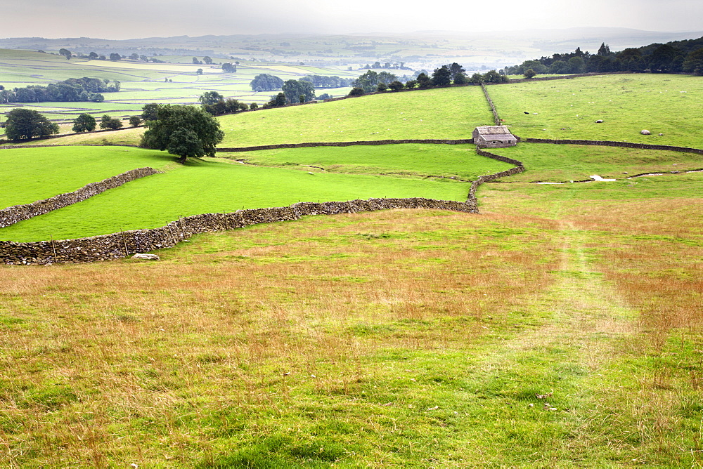 Footpath over meadows in Crummack Dale, Yorkshire, England, United Kingdom, Europe - 845-984