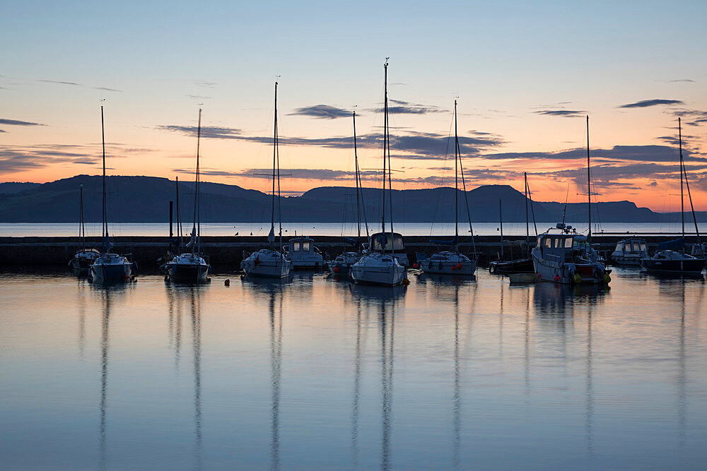 Yachts moored in The Cobb with Jurassic Coast and Golden Cap at sunrise, Lyme Regis, Dorset, England, United Kingdom, Europe - 846-2770