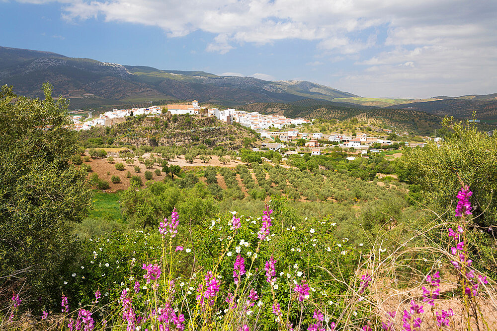 View in spring over the white Andalucian village of El Burgo, Malaga Province, Andalucia, Spain, Europe - 846-2932