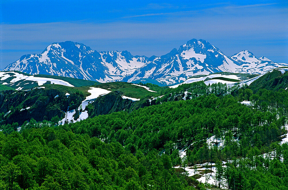 Snow capped mountains, Biogradska National Park, Eastern Highlands, Montenegro, Europe - 846-343