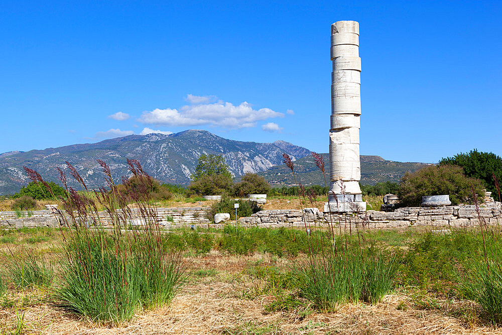 Ireon archaeological site with column of the Temple of Hera, Ireon, Samos, Aegean Islands, Greece - 846-875