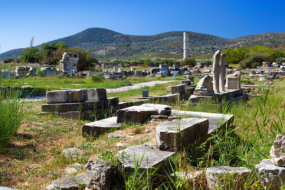 Ireon archaeological site with columns of the Temple of Hera, Ireon, Samos, Aegean Islands, Greece - 846-877