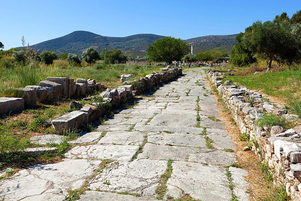 Sacred Way, Ireon archaeological site, Ireon, Samos, Aegean Islands, Greece - 846-878