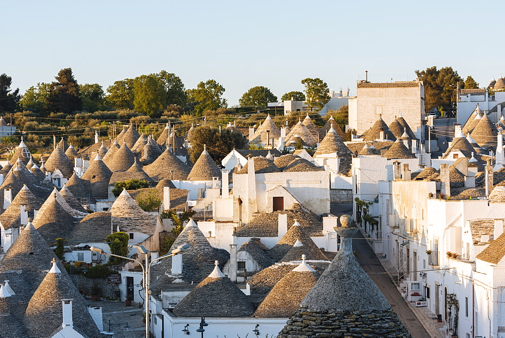Traditional Trulli style houses in Alberobello, UNESCO World Heritage Site, Puglia, Italy, Europe - 848-1312