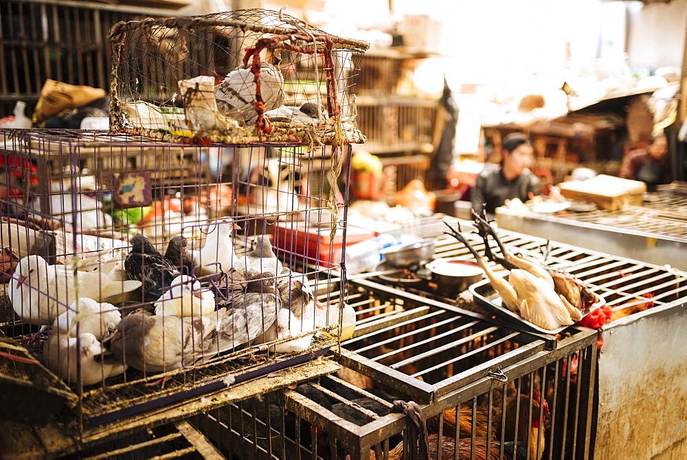 Zhongyi Market, Lijiang, Yunnan Province, China, Asia