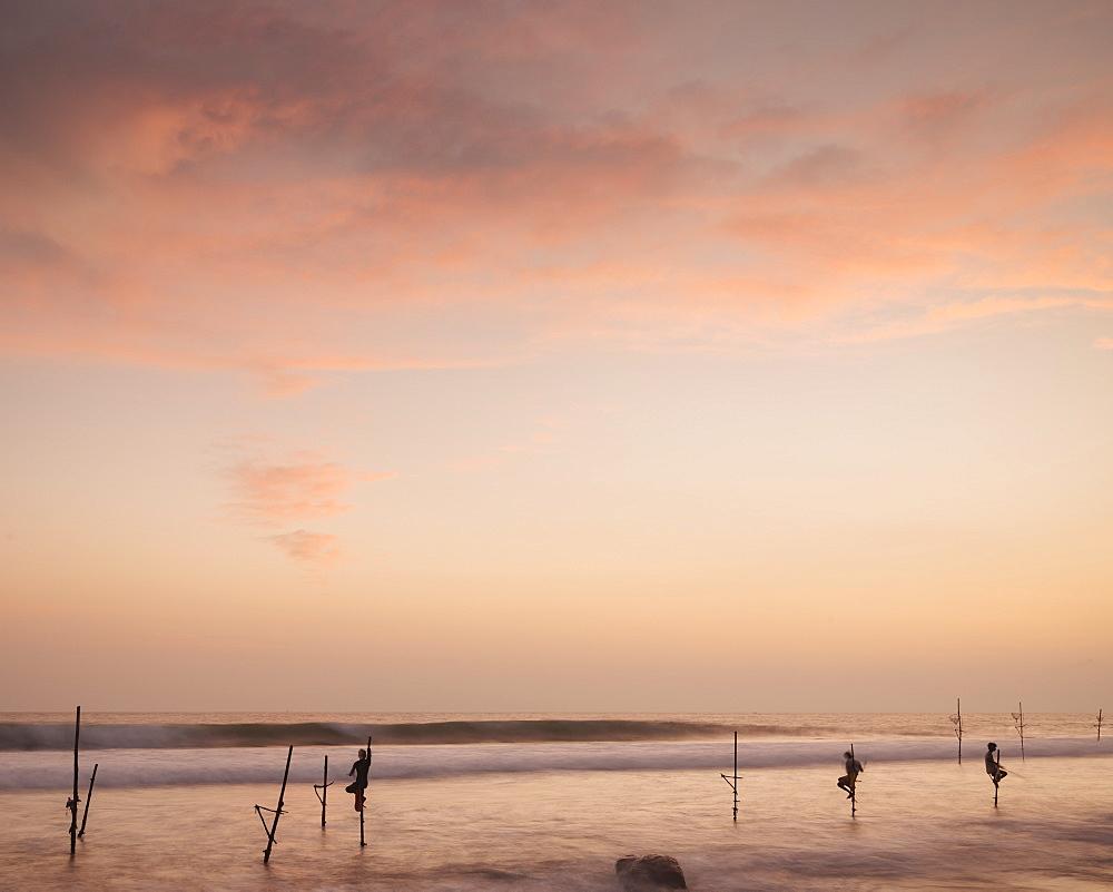 Stilt Fishermen at dusk, Weligama, South Coast, Sri Lanka, Asia - 848-1830