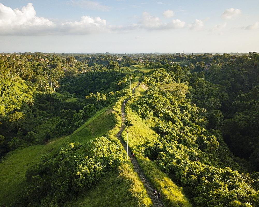 Campuhan Ridge, Ubud, Bali, Indonesia, Southeast Asia, Asia - 848-1869
