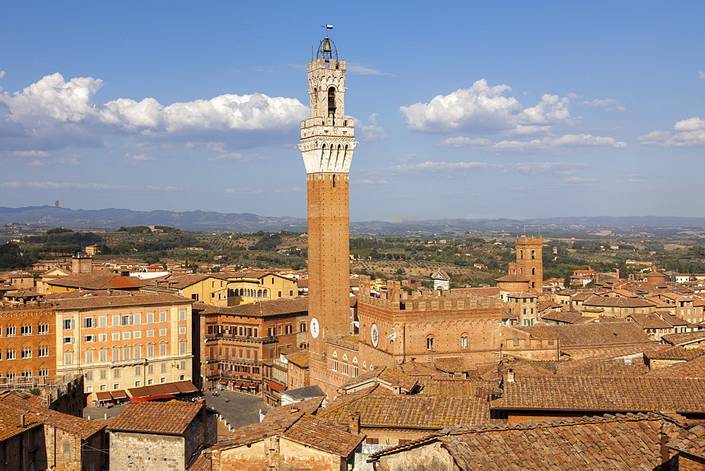 View of Siena Palazzo Publico and Piazza del Campo, UNESCO World Heritage Site, Siena, Tuscany, Italy, Europe - 851-543