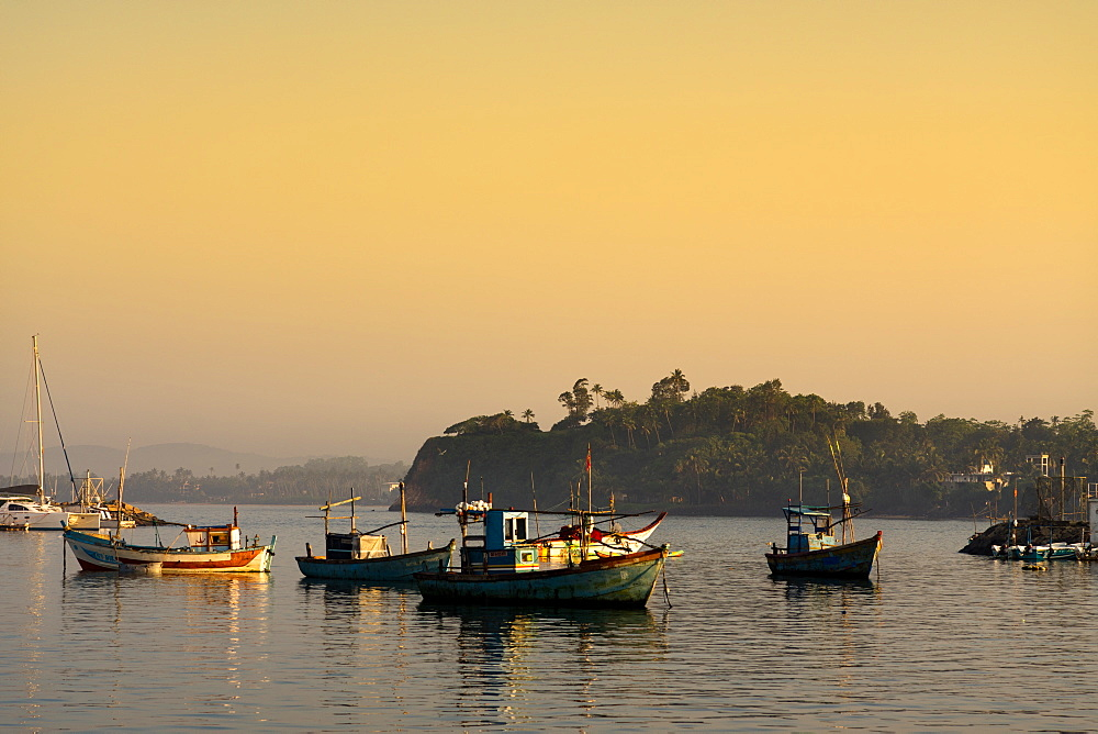 Boats in Mirissa harbour at sunset