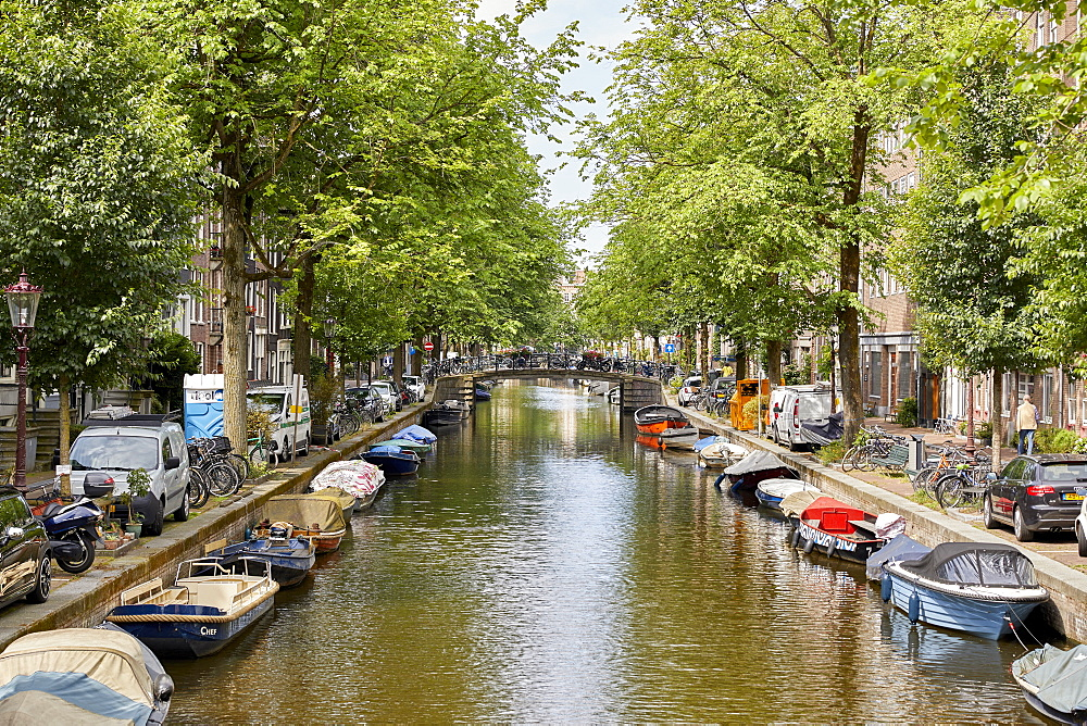 Egelantiersgracht canal in the Jordaan district of Amsterdam, North Holland, The Netherlands, Europe