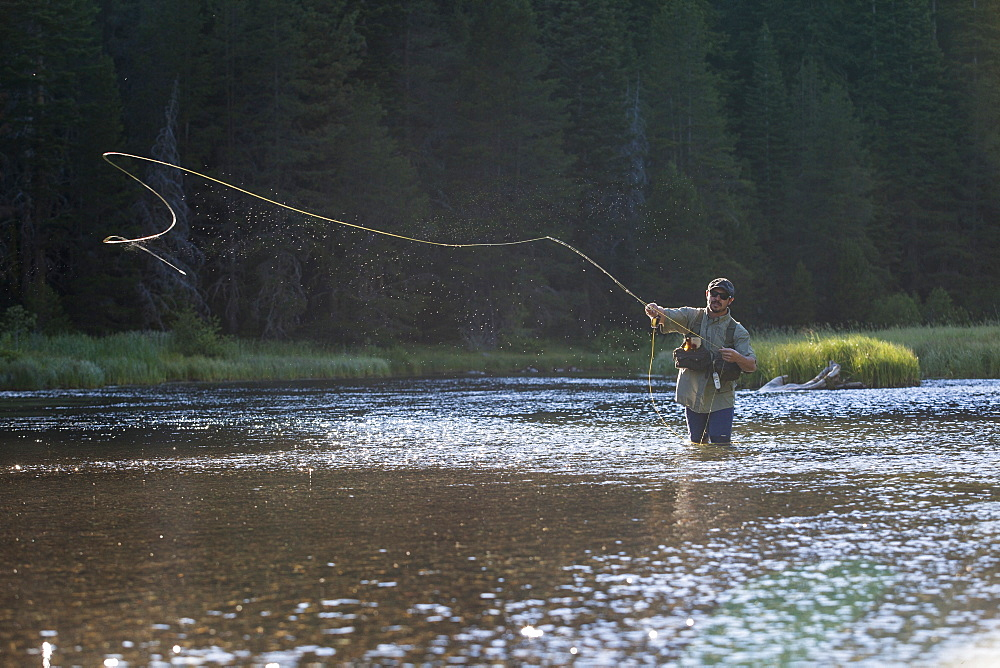 Man Fly Fishing At Truckee River, Nevada, Usa